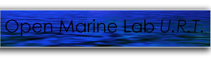 L unit di ricerca presso terzi urt open marine lab for L espropriazione mobiliare presso terzi